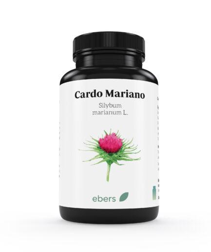cardo-mariano-ebers
