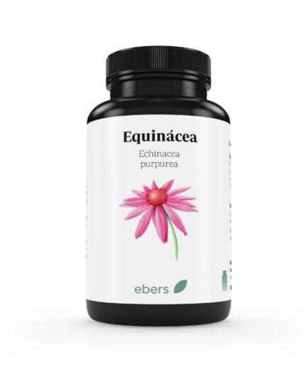 equinacea-ebers