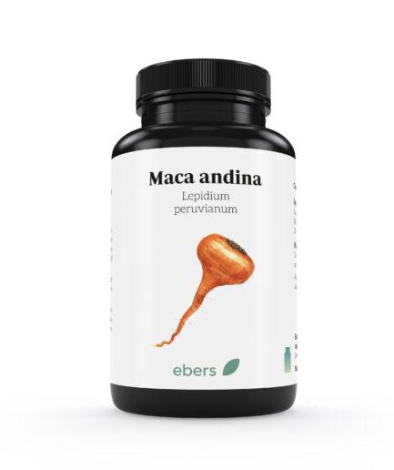 maca-andina-ebers